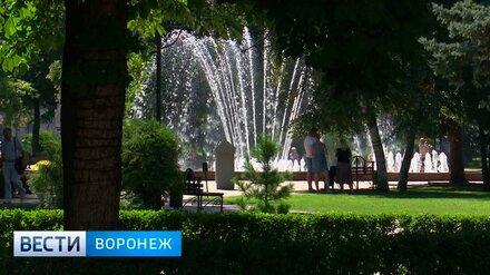 В Воронеж начали поиск подрядчика для обслуживания городских фонтанов