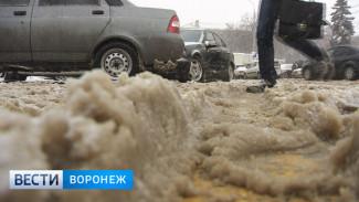 Воронежские чиновники пока разгромно проигрывают снегопаду