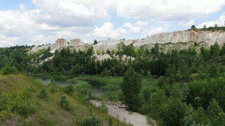 «Музыка мира» может уйти из Белого колодца из-за добычи глины под Воронежем