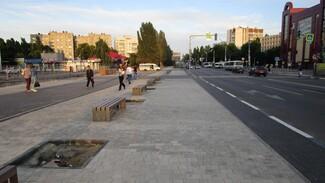 Власти запланировали вернуть рынок на улицу Димитрова в Воронеже