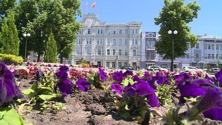Мэр Воронежа попросил у гордумы нового заместителя