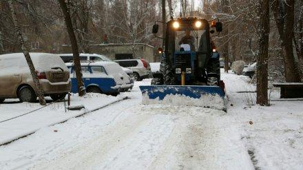 В Воронеже будут штрафовать управляющие компании, игнорирующие уборку снега во дворах