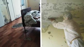 В Воронежской области «адское» детское отделение больницы начали ремонтировать