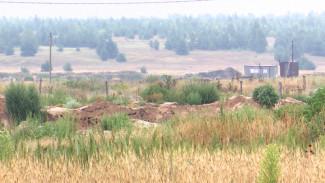 Лискинскую фирму заподозрили в незаконном использовании плодородного поля под Воронежем