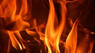 На пожаре в воронежской многоэтажке спасли 4 человек