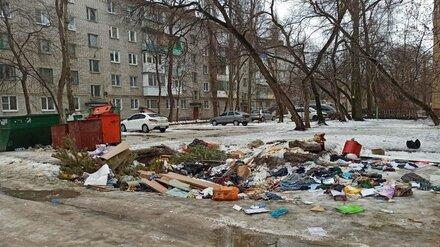 На ремонт мусорных площадок в Левобережном районе Воронежа потратят 50 млн рублей