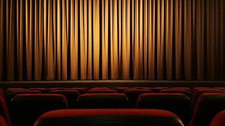 Власти назвали дату открытия театров и концертных залов в Воронежской области