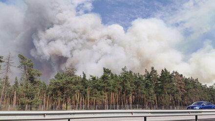 Крупный пожар в Воронежской области подобрался к заправке
