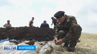 Поисковики обнаружили в Воронежской области упавший в 1942 году самолет