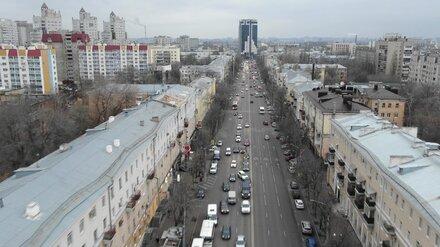 Блогер Варламов раскритиковал одну из главных улиц Воронежа