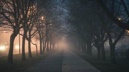 Жёлтый уровень опасности объявили в Воронежской области из-за тумана