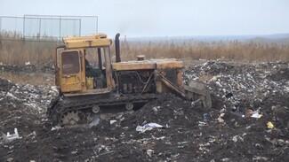 Мусор-путешественник. Почему в Воронежской области взялись бороться за незаконные свалки