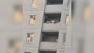 Воронежцы сняли на видео парней, сбрасывавших мусор и кирпичи с 12 этажа