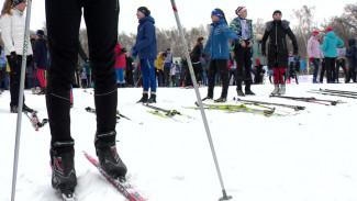 VIP-забег на 2019 метров не вызвал ажиотажа у воронежцев на «Лыжне России»