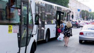 Воронежцы сообщили о перебоях в работе популярного автобусного маршрута