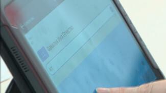 «Не готовы ждать». Воронежцам рассказали, как принять участие в переписи населения онлайн