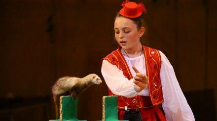 Воронежский театр забил тревогу, опасаясь закрытия из-за нового закона о защите животных
