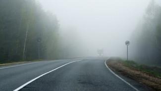 Синоптики предупредили жителей Воронежской области об опасном тумане