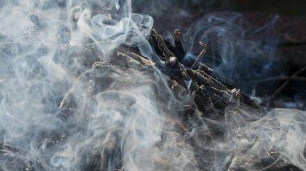 Воронежские власти взяли под контроль расследование причин пожара в «Северном лесе»