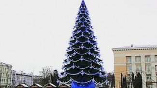 Мэр Воронежа потребовал каждый год улучшать украшение города к Новому году