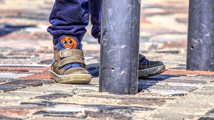 В Воронежской области нашли спрятавшегося от дворовых собак 6-летнего мальчика