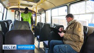 Воронежская мэрия ищет грязные маршрутки среди начищенных автобусов