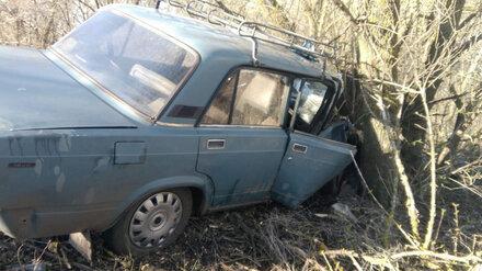 В воронежском селе ВАЗ вылетел в кювет: пострадал водитель