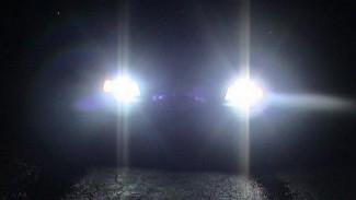 В Воронежской области Dodge насмерть сбил пешехода