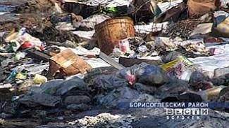 В окрестностях Петровского запланировано строительство полигона ТБО