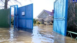«Бегать замучаешься». Почему воронежцы отказались страховать дома в зоне подтопления
