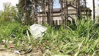 Воронежцы пытаются сохранить заброшенный парк на Новосибирской