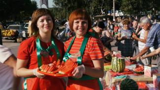 В Воронежской области прошёл самый сладкий региональный фестиваль года