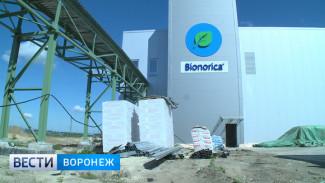 Как Воронеж готовится к открытию особой экономической зоны «Центр»