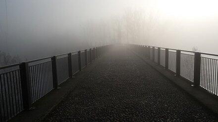 Воронежцев предупредили о накрывшем город опасном тумане