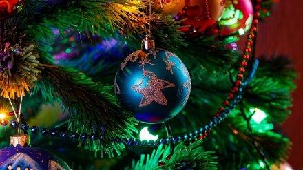 Депутаты попросили воронежского губернатора сделать 31 декабря выходным
