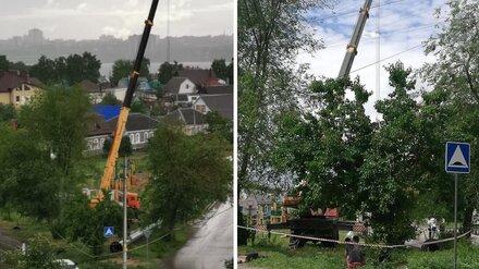 В Воронеже посередине детской площадки установили вышку сотовой связи