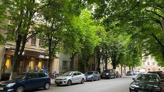 Изуродовавших «парижскую» каштановую аллею в Воронеже не смогли найти за месяц