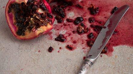 В Воронежской области просьба одолжить нож обернулась попыткой убийства