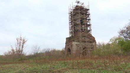 В Воронеже неизвестные возвели строительные леса вокруг старинной колокольни
