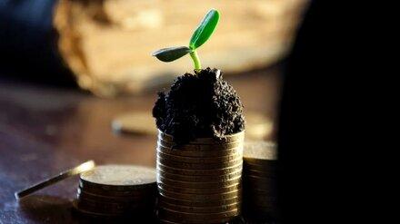 Самый богатый воронежский фермер потерял в пандемийном году почти половину доходов