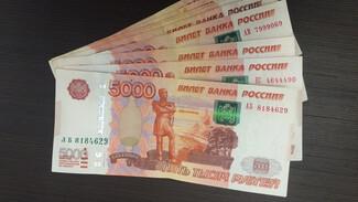 В Воронеже «Русавиаинтер» полностью погасил 58 млн рублей долгов по зарплате