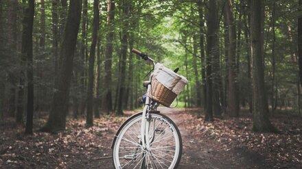 В воронежском селе на обочине насмерть сбили велосипедистку