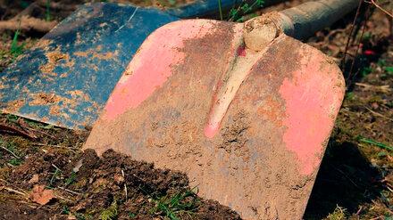В Воронежской области у трассы М-4 «Дон» нашли появившиеся до нашей эры захоронения