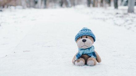 Стало известно, где до ночи в сильный мороз скитался пропавший 10-летний воронежец