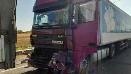 В Воронежской области при столкновении двух тягачей пострадал водитель