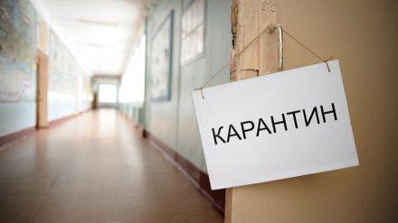 Число закрытых на карантин школ в Воронежской области выросло до 74