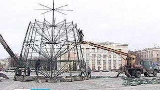На главной площади Воронежа начался монтаж новогодней ёлки