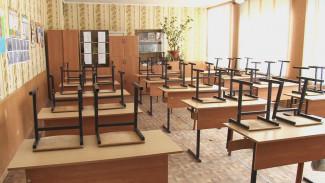 Воронежские родители сами попросили продлить карантин в школах