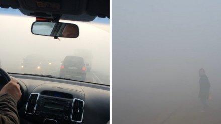 Воронежцы вновь пожаловались на удушающий дым и «нулевую видимость» на дорогах