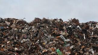 В Воронежской области построят ещё два мусоросортировочных полигона